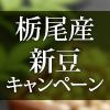 banner_100x100_7set