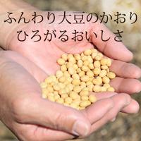 200新豆